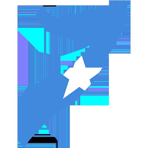 Work Profile Somalia