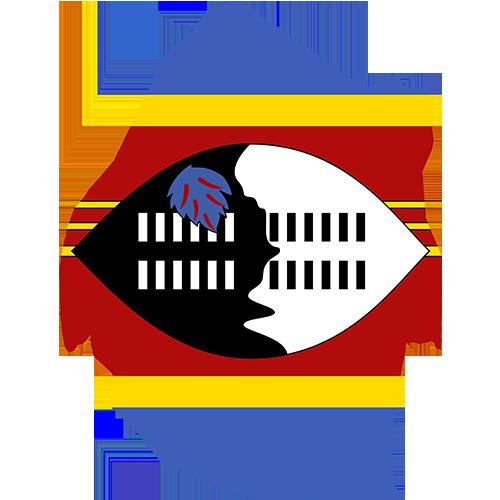 Work Profile Swaziland