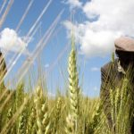 How Africa's smallholders can feed the world